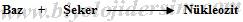nükleozit